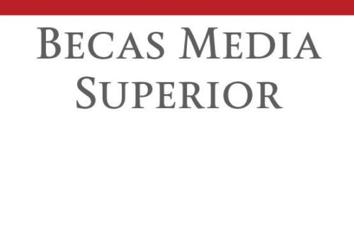 Coordinación de becas media superior